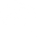 film-reel-256