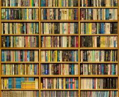 paperback bookshelf